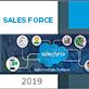 Fidelización de clientes en Sales Force